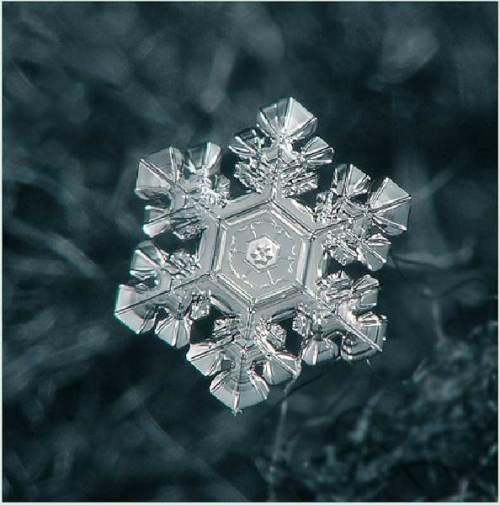 Snowflake_art_1