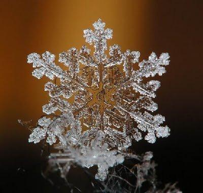 Snowflake_art_11