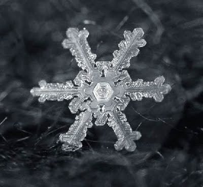 Snowflake_art_14