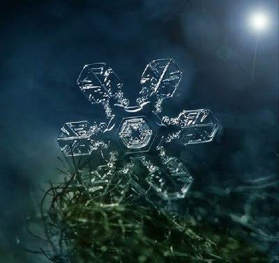 Snowflake_art_15