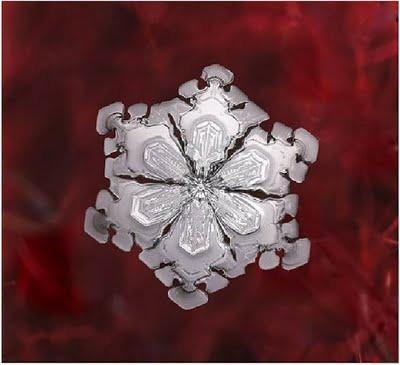 Snowflake_art_2