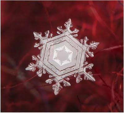 Snowflake_art_3