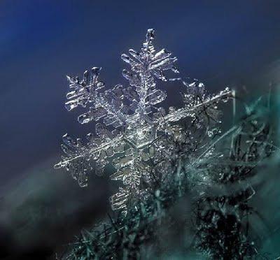 Snowflake_art_6