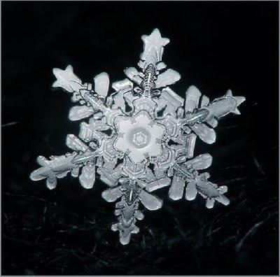 Snowflake_art_8
