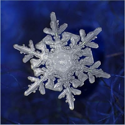 Snowflake_art_9