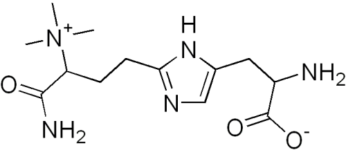 Diphthamide
